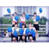 Wholesale Cheerleader Pom Pom Set with 2pcs for Sports from china suppliers