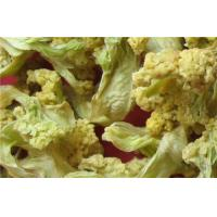 Buy cheap Dehydrated Cauliflower Florets from wholesalers