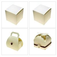 Ivory Silk Favour Box