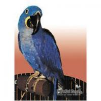 Buy cheap Birds Polly Perfect Perch-Large from wholesalers
