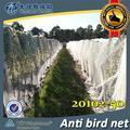 Wholesale Australia black anti bird netting for fruit trees from china suppliers