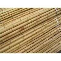 Bamboo Poles Lowes Images Buy Bamboo Poles Lowes