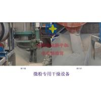 Wholesale Micro Powder dryer from china suppliers