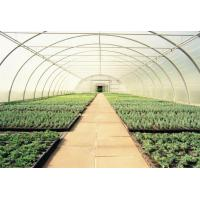 Wholesale plastic covering greenhouse film from china suppliers