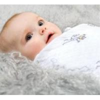 Wholesale aden + anais - Classic Muslin Swaddling Blankets (4 pack) from china suppliers