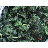 Wholesale Frozen Spinach from china suppliers