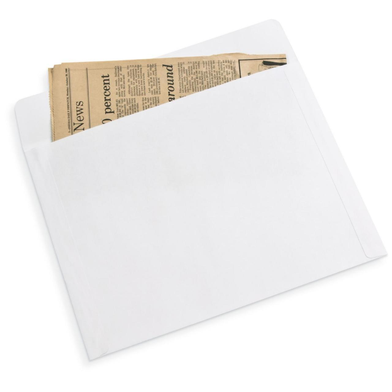 Gaylord Archival 80 lb. Text Unbuffered Long Side Opening Envelopes (50-Pack)