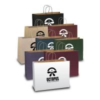 Wholesale Judy Matte Shopper Paper Bags from china suppliers