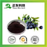 Buy cheap Bilberry Extract---High Concertration of Anthocyanins from wholesalers