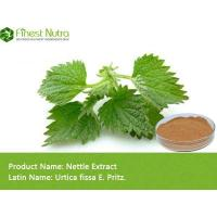 Buy cheap Nettle Extract - Nettle Extract from wholesalers