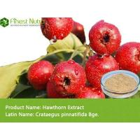 Buy cheap Hawthorn Extract - Flavone, Vitexin Rat Lee Glucoside from wholesalers