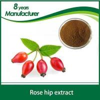 100% Natural Rose Hips Fruit Extract 5% 6% 10% VC
