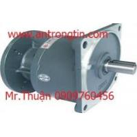 Wholesale Gear motors Wansin from china suppliers