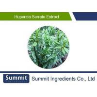 Wholesale Huperzia Serrate Extract from china suppliers