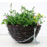Wholesale Bedding 30cm Twiggy Round Basket from china suppliers