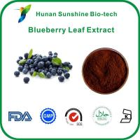 Buy cheap Blueberry Leaf Extract from wholesalers