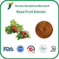 Buy cheap Rose Fruit Hip Extract from wholesalers