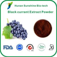 Buy cheap Black currant Extract Powder from wholesalers