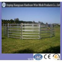 Wholesale Cattle Yard Panel for Farm /Cheap Cattle Yard Panel from china suppliers