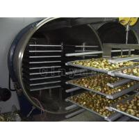 FD-200 Freeze Dryer   Freeze Drying Equipment Low Prices