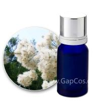 Wholesale High Quality Best Price 100% Natural Cajuput Essential Oil from china suppliers