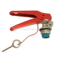 Wholesale DCP extinguisher valve 6kg from china suppliers