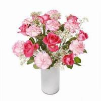 Wholesale Rose and Carnation NO.14 from china suppliers