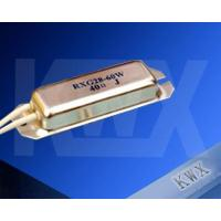 RXG28 Power wire-wounded resistor