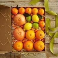 Wholesale Simply Fresh Winter Citrus NO.2 delivery gift to taiwan from china suppliers