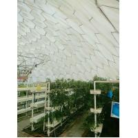 Wholesale Bird's nest greenhouse from china suppliers