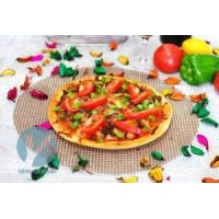 Wholesale reusable pizza mesh from china suppliers