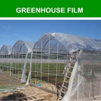 Wholesale greenhouse film used in vegetable from china suppliers