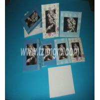 Wholesale European Style Photo Frame from china suppliers