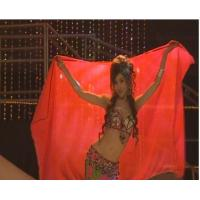 belly dance skirt&veils vs01