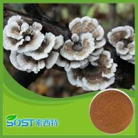 Buy cheap Coriolus versicolor from wholesalers