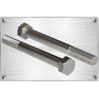 China Bolts Titanium hex head bolt on sale