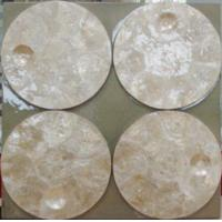 Wholesale Gemarine -- Seashell Collection -- GC026 from china suppliers