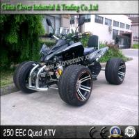 Wholesale EEC Standard 14 Inch Street Wheel Legal Racing ATV 250cc Quad Bike from china suppliers