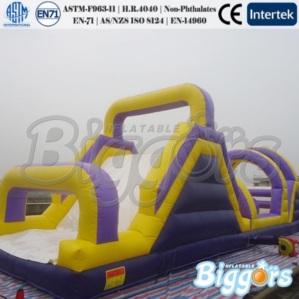 Adult Inflatable Toys 53