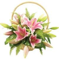 Wholesale Anniversary loves Lilies from china suppliers