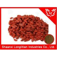 Wholesale Immunity Enhancers chinese Wolfberry extract,Goji extract powder supplier from china suppliers