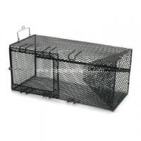 Wholesale Stainless Steel Lobster Net Trap from china suppliers
