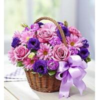 Wholesale Basket of Blooms from china suppliers