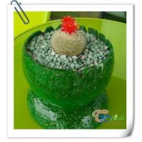 Wholesale Fiberglass manual potted cactus succulent pots planters from china suppliers