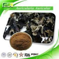 Wholesale Supply Best Price Organic Auricularia Auricular Extract Powder from china suppliers