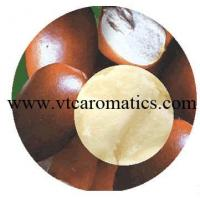 Wholesale Shea Butter Oil from china suppliers
