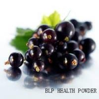 Wholesale Black Currant Powder from china suppliers