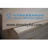 Wholesale Commercial plywood Model No: plywood door skins from china suppliers