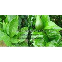 Wholesale Agricultural Pesticide Silicone Synergistic Agent from china suppliers