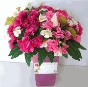Wholesale Get Well Gift Baskets from china suppliers